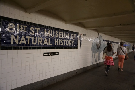 The station at 81st Street