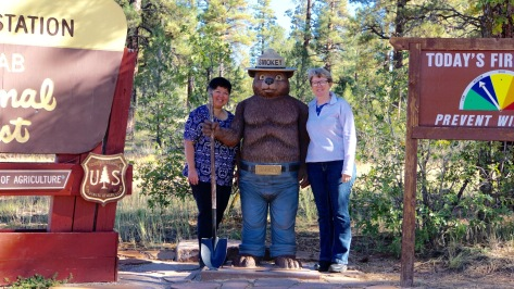 Smokey Bear is on the job!
